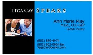 What is Babynet by Ann Marie May of Tega Cay Speaks