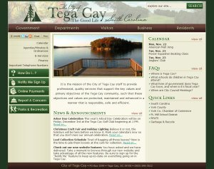 Tega Cay Rolls Out New Web Communication Tool