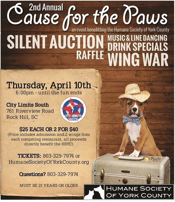 2nd annual cause for Pause Auction Flyer