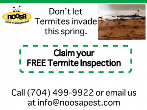 How To Get A Free Termite Inspection For Your Home