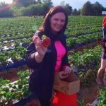 Picking Strawberries In Fort Mill