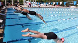 Just Add Water Tega Cay Breakers Swim Team
