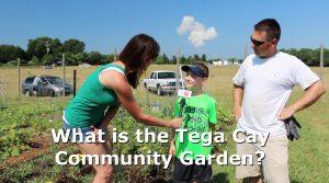 Tega Cay Baptist Community Garden Sharing Food & Faith
