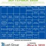 30 Days For A Cure Calendar